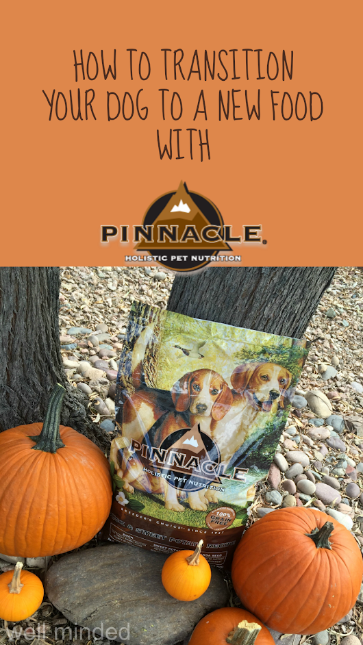how to transition your dog to a new food with #PinnacleHealthyPets #sponsored