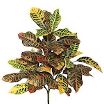 """Vickerman 34"""" Artifical Green and Orange Cronton Plant Featuring 3 Branches with 40 Leaves"""