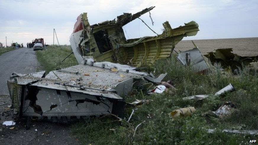 A picture taken on 17 July, 2014, shows the wreckages of the Malaysian airliner carrying 298 people from Amsterdam to Kuala Lumpur after it crashed, near the town of Shaktarsk, in rebel-held east Ukraine