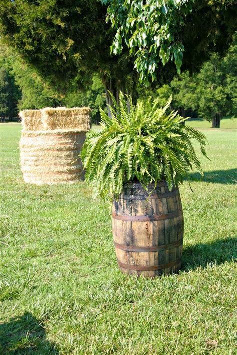 Best 20  Whiskey Barrel Wedding ideas on Pinterest   Barns