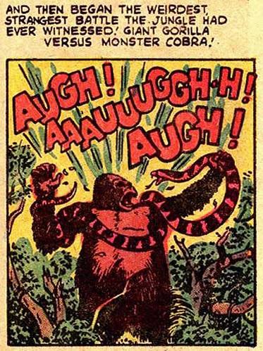 Hollywood Gorilla Men: GIANT GORILLA VS MONSTER COBRA
