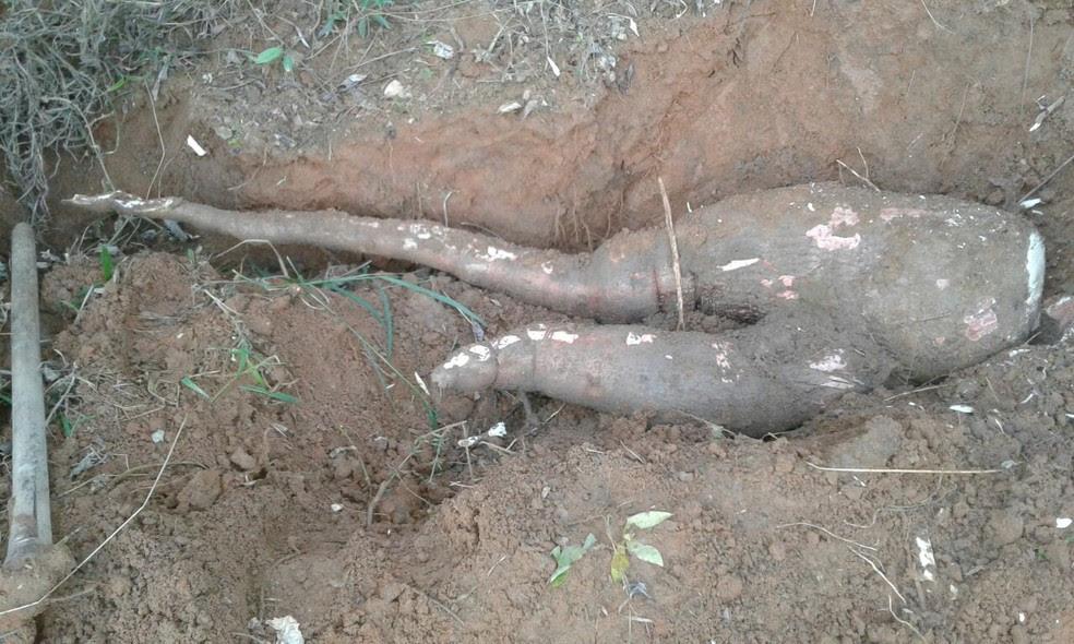 Mandica gigante é encontrada em Taubaté (Foto: Arquivo Pessoal/Noboro Obara)