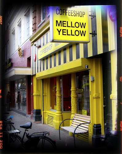 mellow and yellow