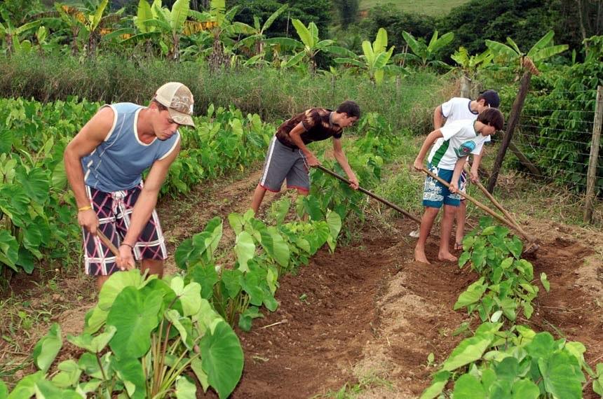 Projeto em análise na CAE quer garantir verba mínima para a área de assistência técnica e extensão rural em todo o país - Foto: Seag/ES