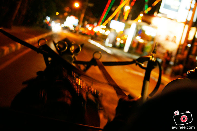 HORSE-CAR-RIDE-CARRIAGE-BALI-KUTA