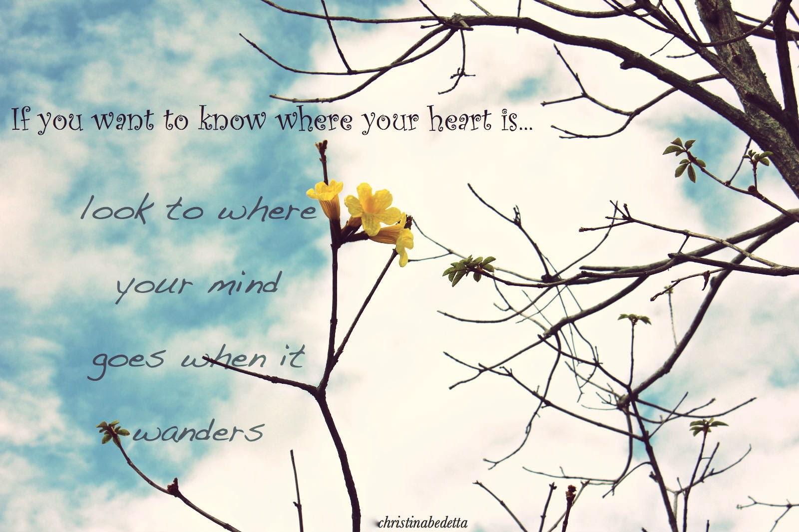If You Want To Know Where Your Heart Islook To Where Your Mind Goes