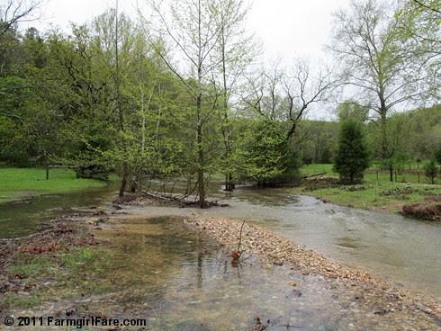 Creek's Way Up 1