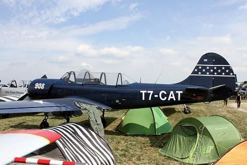 T7-CAT