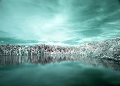 lake por Dana Whitford
