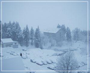 今朝の上越国際スキー場……猛吹雪であります。どうしましょ……。