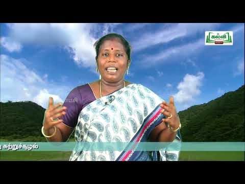 2nd EVS சுழ்நிலையியல் நமது சுற்றுசூழல் அலகு 1 பருவம் 1 Kalvi TV