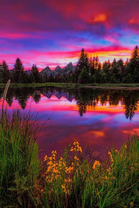 Beautiful Landscape photography : Jackson Hole, WY Beaver