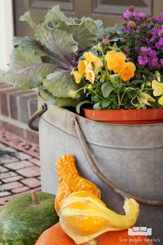 Fall Porch Decor 2016 - two purple couches