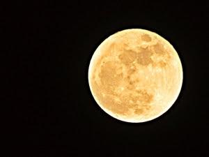 Таинственная соседка: кто-то бродит по Луне. 20300.jpeg