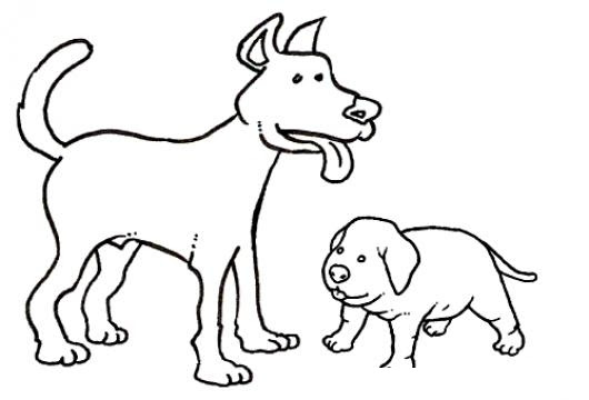 Perro Grande Y Perro Pequeno Para Pintar Y Colorear Colorear