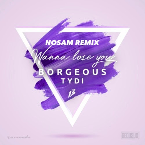 Borgeous & tyDi - Wanna Lose You (NOSAM Remix)(Official Remix) by NOSAM