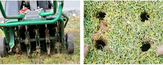 3 Reasons Lawn Aeration Is Important for a Healthy Lawn