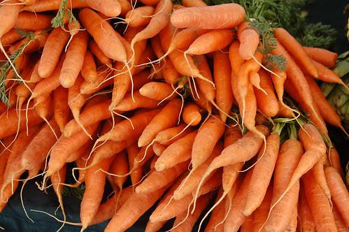 Carrots in Season