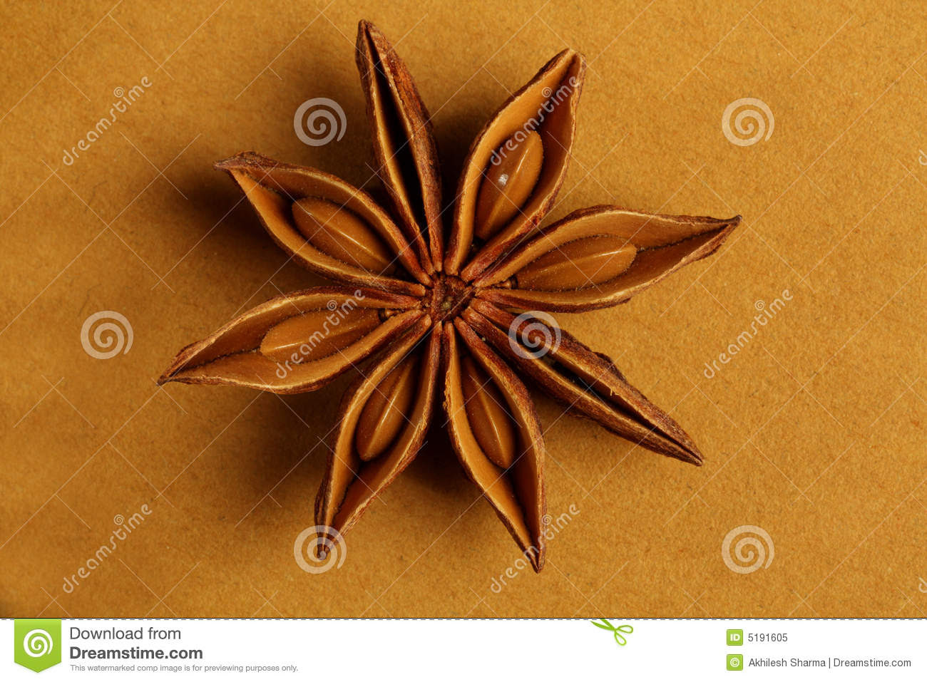 anise star shaped indian spice 5191605