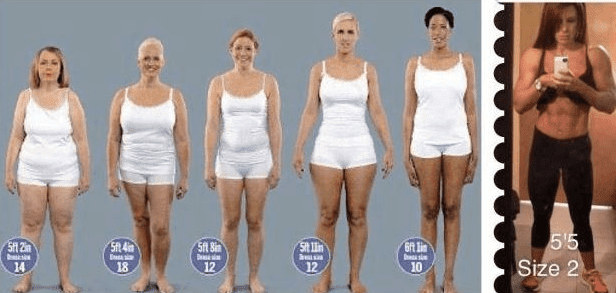 body fat percentage bmi difference