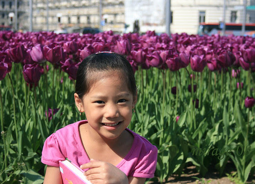 alex and tulips