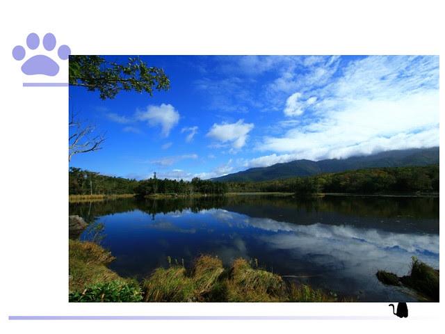 TBG-日本自助旅行之必要 – 溫泉+20121110.024