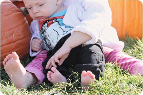TB EB toes pumpkin web.jpg