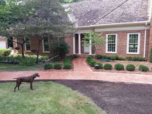 2 Before and After Landscaping Projects You Must See