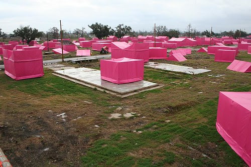 City of pink