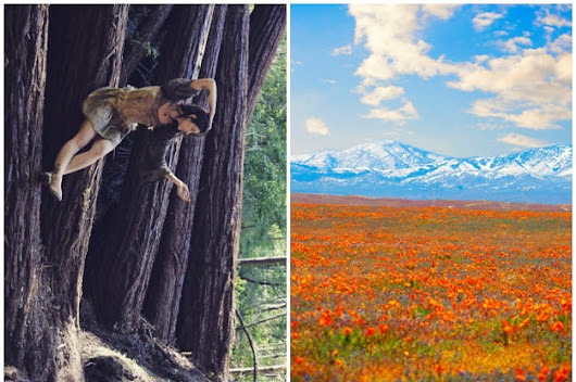 17 Totally Surreal Places In California You Have To See Before You Die