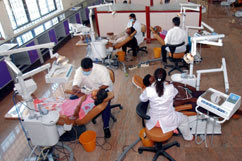 English: Dental students on internship
