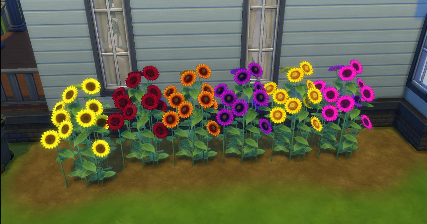 Mod The Sims - TS2 Sunflowery Shrubbery
