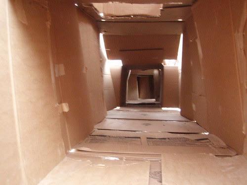 inside cardboard box maze