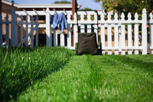 Blog | Cypress Lawn and Landscaping