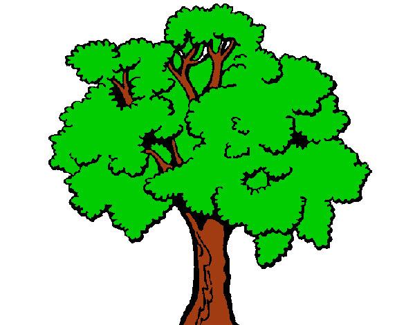 Dibujo De árbol 1 Pintado Por Vale24 En Dibujosnet El Día 26 08 12