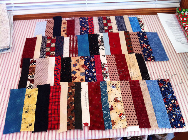 IMG_6418 Scrappy Not-Really-A-Jelly-Roll Quilt