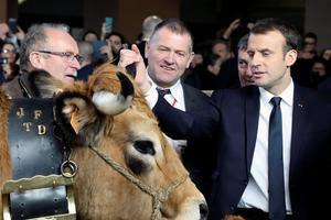 Emmanuel Macron rencontre Haute, la mascotte du salon.