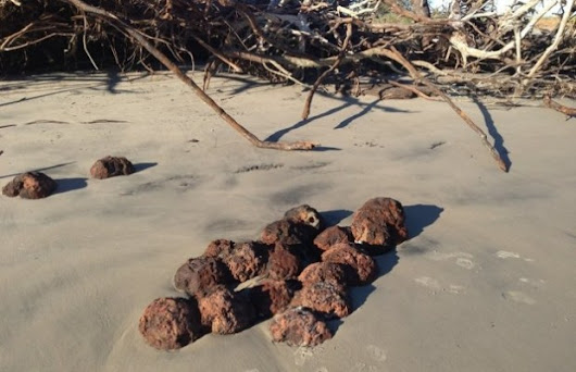 Hurricane Matthew Unearths Civil War Era Cannonballs - Unshootables