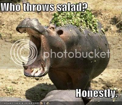 lol hippo- throw salad