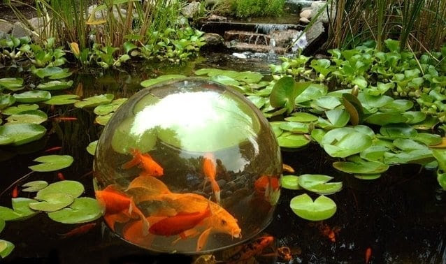 koi ponds and water gardens for modern homes 14d