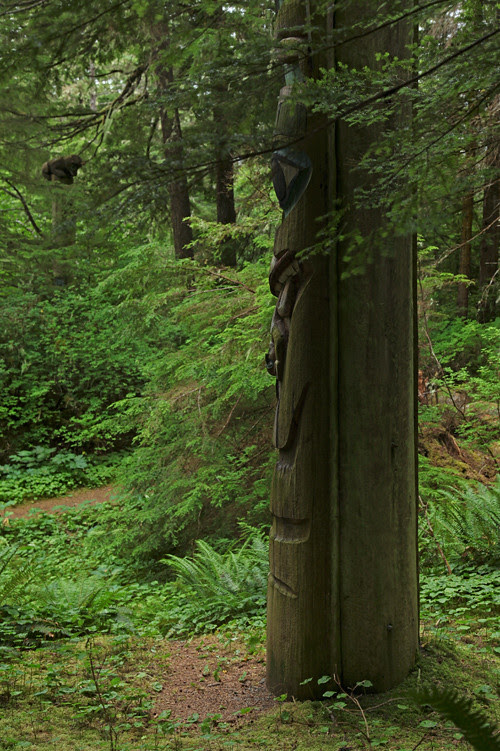 totems and trees, Totems Historic District, Kasaan, Alaska
