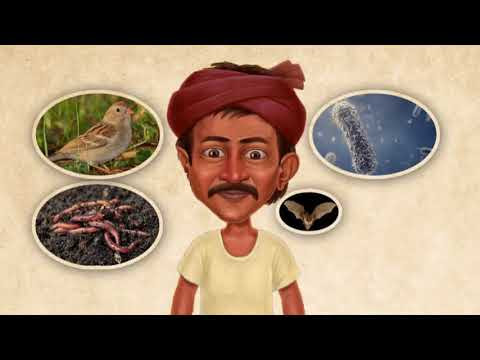 Nelatalli | నేల తల్లి (Mother Earth) – Movie on ZBNF (Zero Budget Natural Farming) in Telugu language