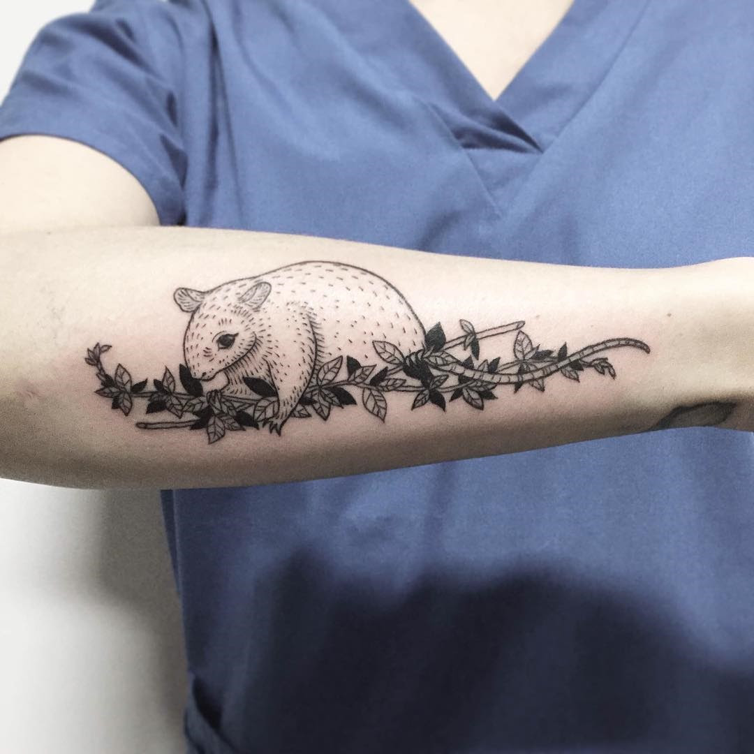 50 Amazing Vine Tattoo Ideas - Discover Their True Meaning