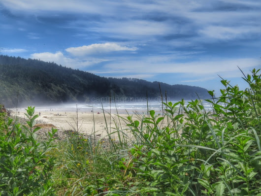 Campground Review: Cape Lookout State Park | Camping Our Way