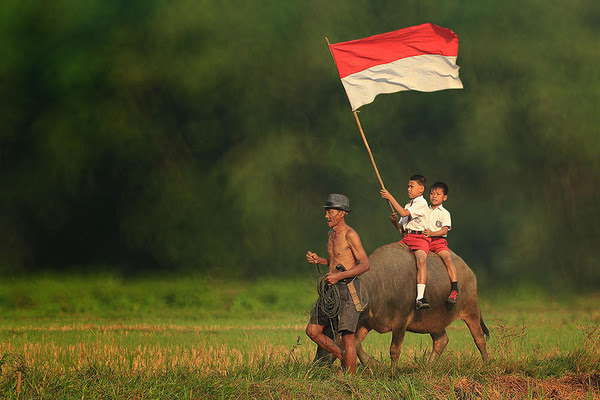 14 OMG Facts About Indonesia: Funny, Interesting and Weird  Reckon Talk