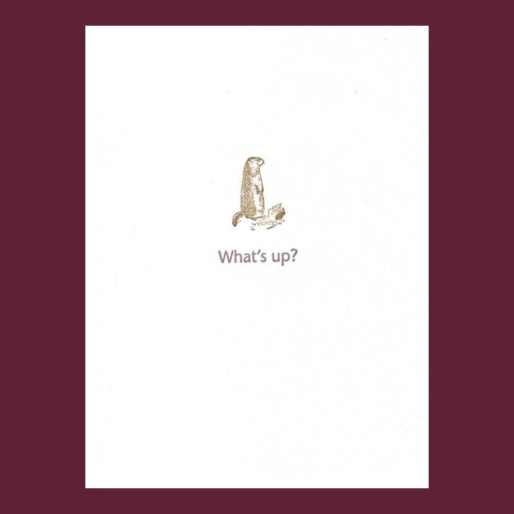 What's up... Groundhog card - letterpress printed