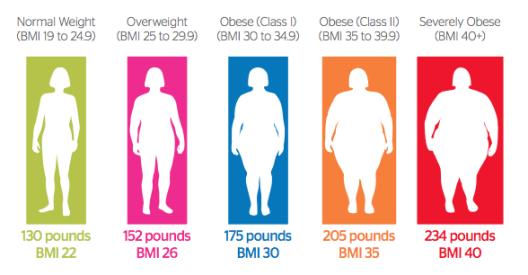 body fat percentage in obesity