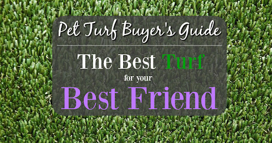 Pet Turf Buyer's Guide: The Best Floor for Your Best Friend - FlooringInc Blog