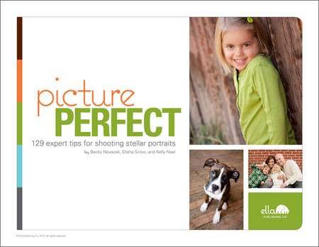 Picture Perfect: 129 expert tips for shooting stellar portraits (by Becky Novacek, Elisha Snow, and Kelly Noel)