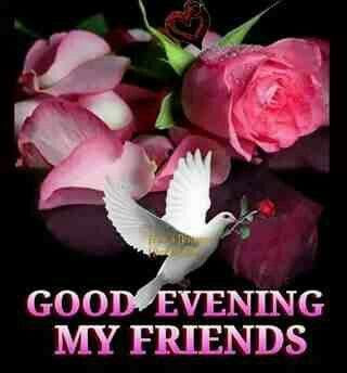 My Friends Good Evening Pictures Photos And Images For Facebook